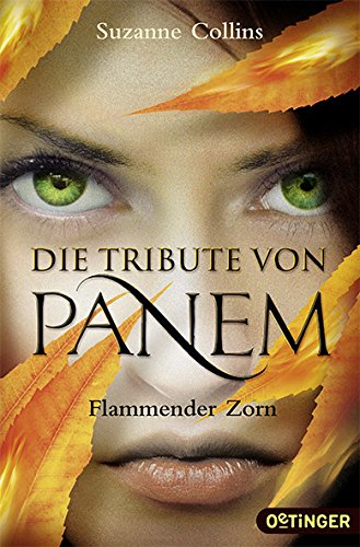 Cover: Flammender Zorn