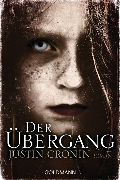 Cover: Der Übergang
