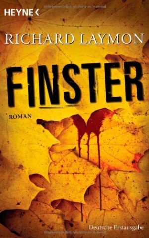 Cover: Finster